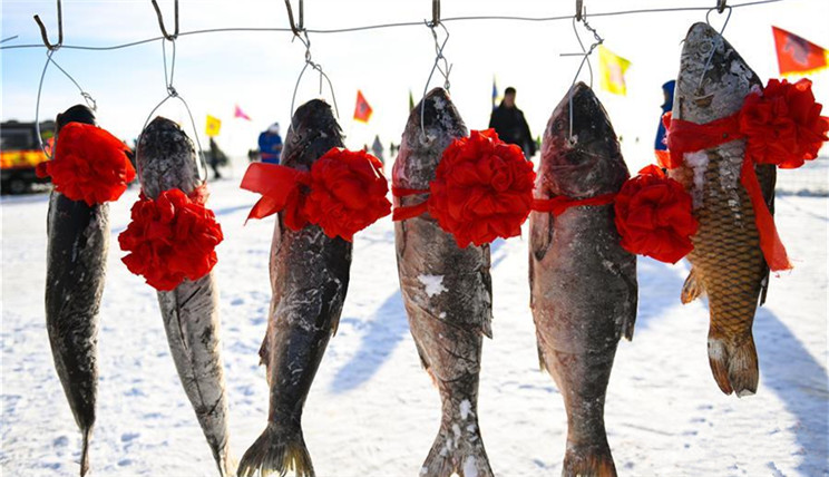 内蒙古草原冰湖冬捕 吸引众多游客