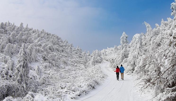 10万游客涌上齐岳山,湖北又多了一处赏雪地!