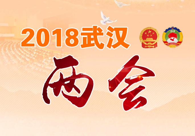 2018武汉两会