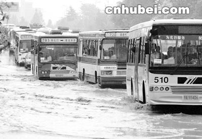 """公交车排队""""过河""""(图)"""