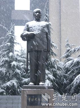 的祸   洪山广场上的扫雪工人   坚守岗位   留下难忘记忆图片