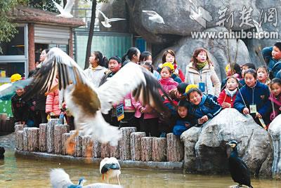 武汉市教育局组织素质训练冬令营(图)