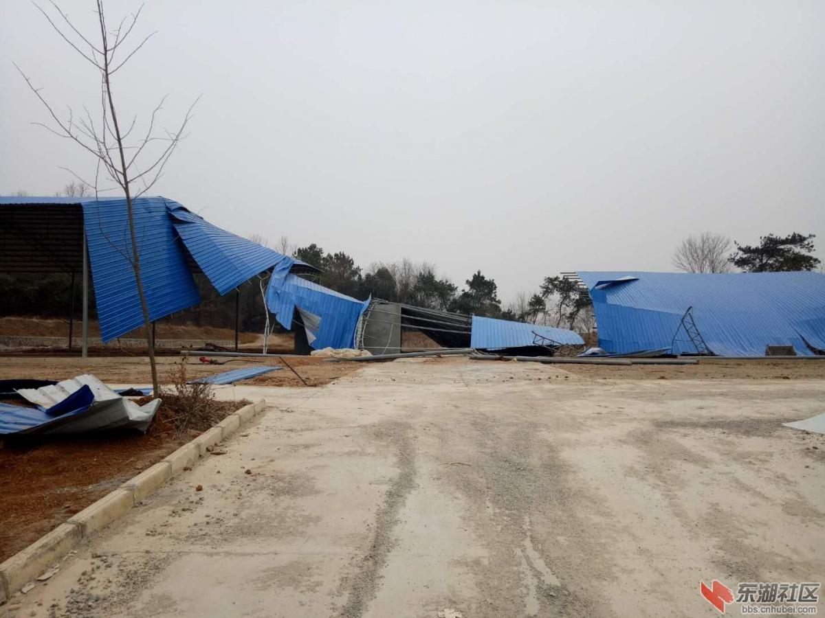 荆门仙居乡新建的秸秆收储中心被大雪压塌