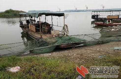 汉江天门段仍有很多电捕鱼船