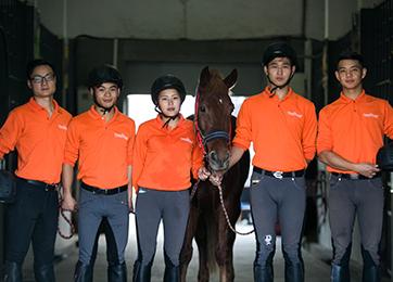 武汉高校赛马专业教出6个全国冠军 学生与马为伍