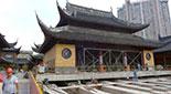 130岁宝殿每天平移6米