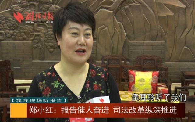 【我在现场听报告】郑小红:报告催人奋进 司法改革纵深推进