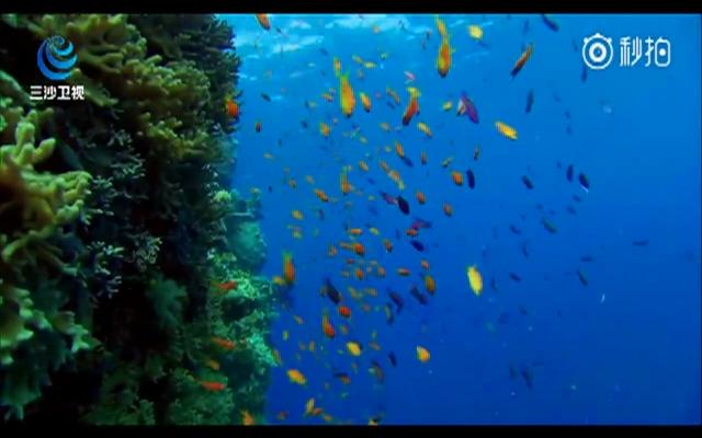 洗洗眼睛!看惊艳世界的南海明珠――三沙