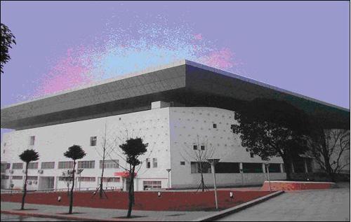 体育馆内场可承办篮球,排球,羽毛球,乒乓球,健美操,体育舞蹈,武术等