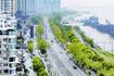 5月1日起武汉新增60条严管路 一次违停罚款200元