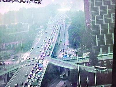"""男子""""跳桥秀""""致长江二桥拥堵3小时 律师:可拘留"""