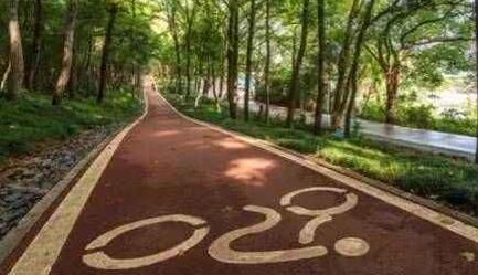 东湖绿道二期70公里全线贯通 计划于年底前建成开放