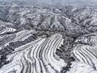黄土高原降春雪美如画卷