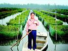 中国养鳝第一村的嬗变