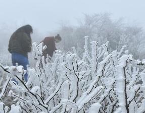 恩施下雪啦!