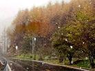 神农架迎湖北今秋首场雪