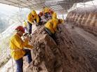 重庆现世界级恐龙化石群