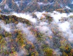 光雾山层林尽染如仙境