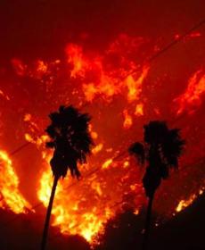 加州野火已烧到太平洋