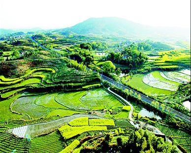 蕲春漕河镇地图